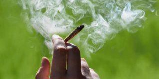 Marihuana medicinal fumable podría ser prohíbida