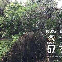 Mal tiempo ocasiona daños en Palm Beach Gardens