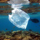 """""""Azure"""" es el nuevo invento para atrapar el plástico que llega al mar"""