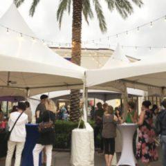 Prepárate para una noche divertida y caliente en Palm Beach Outlets