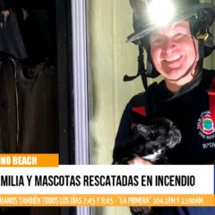 Familia completa y mascotas rescatadas en incendio